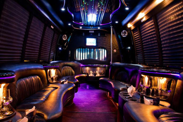 15 Person Party Bus Rental Springdale